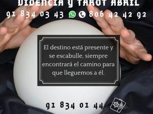 HAS DEL TAROT TU GUÍA Y APOYO DIARIO