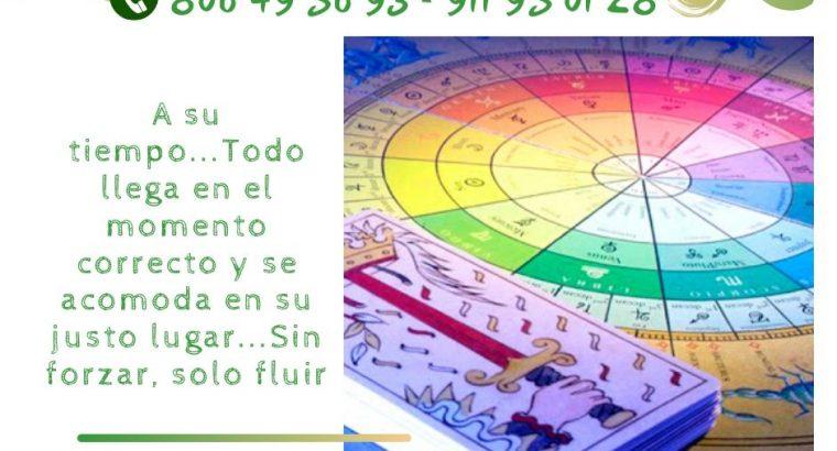 ACTUA DE MANERA CORRECTA ANTE ESA PREDICCION…