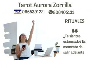Maestra Tarotista