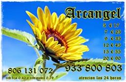 Mi videncia te mostrara el camino 933800803 visas