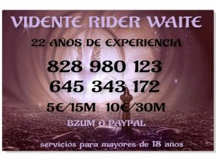 Vidente Rider Waite